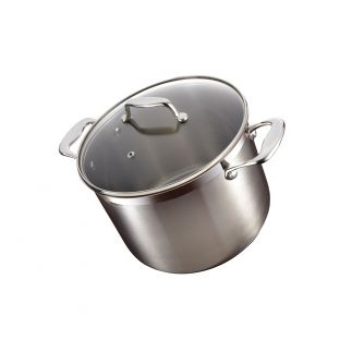 Baccarat iconiX 24cm Stockpot with Lid